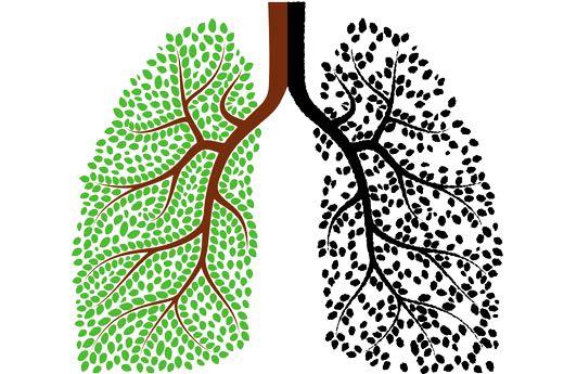 respiratia-corecta